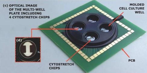 lab-on-chip-biosensor
